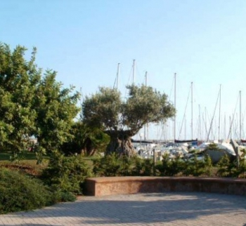 Studio apartment on the promenade of Santo Stefano ...