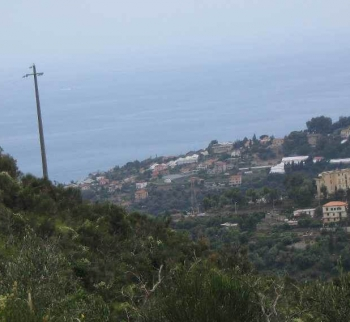 Land with a project of a house from San Remo to the sea