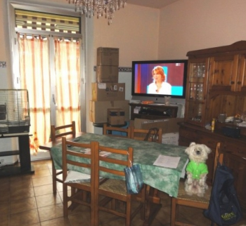Cheap apartments in Cairo Montenotte