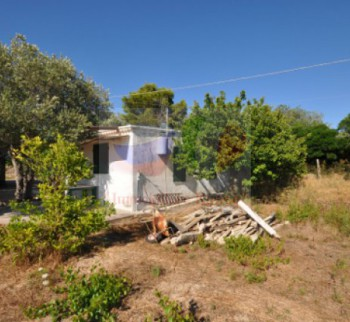 House for sale in Sardinia | Property in Alger ...