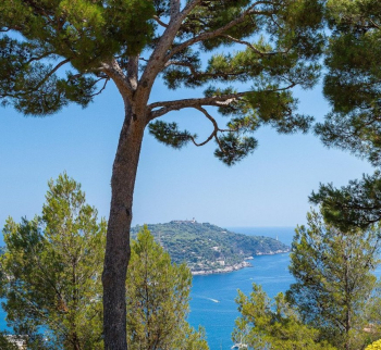 Apartment in Villefranche-sur-Mer by the sea
