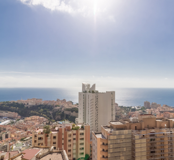 Apartment in Monaco with sea view