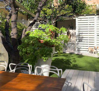Apartment in Bordighera with garden