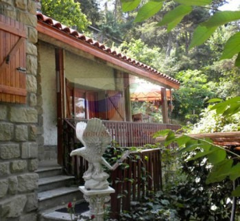 Cheap house for sale in Bayardo, Liguria