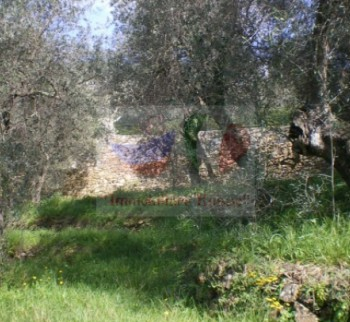 Buy land for building a house in Liguria, Imp ...