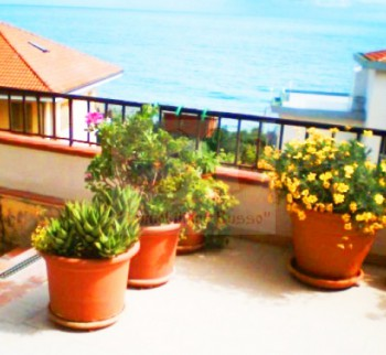 Buy apartments in Chipressa, by the sea of Liguria