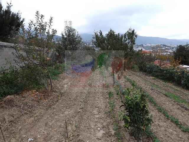 Buy Land in San Remo under construction ...